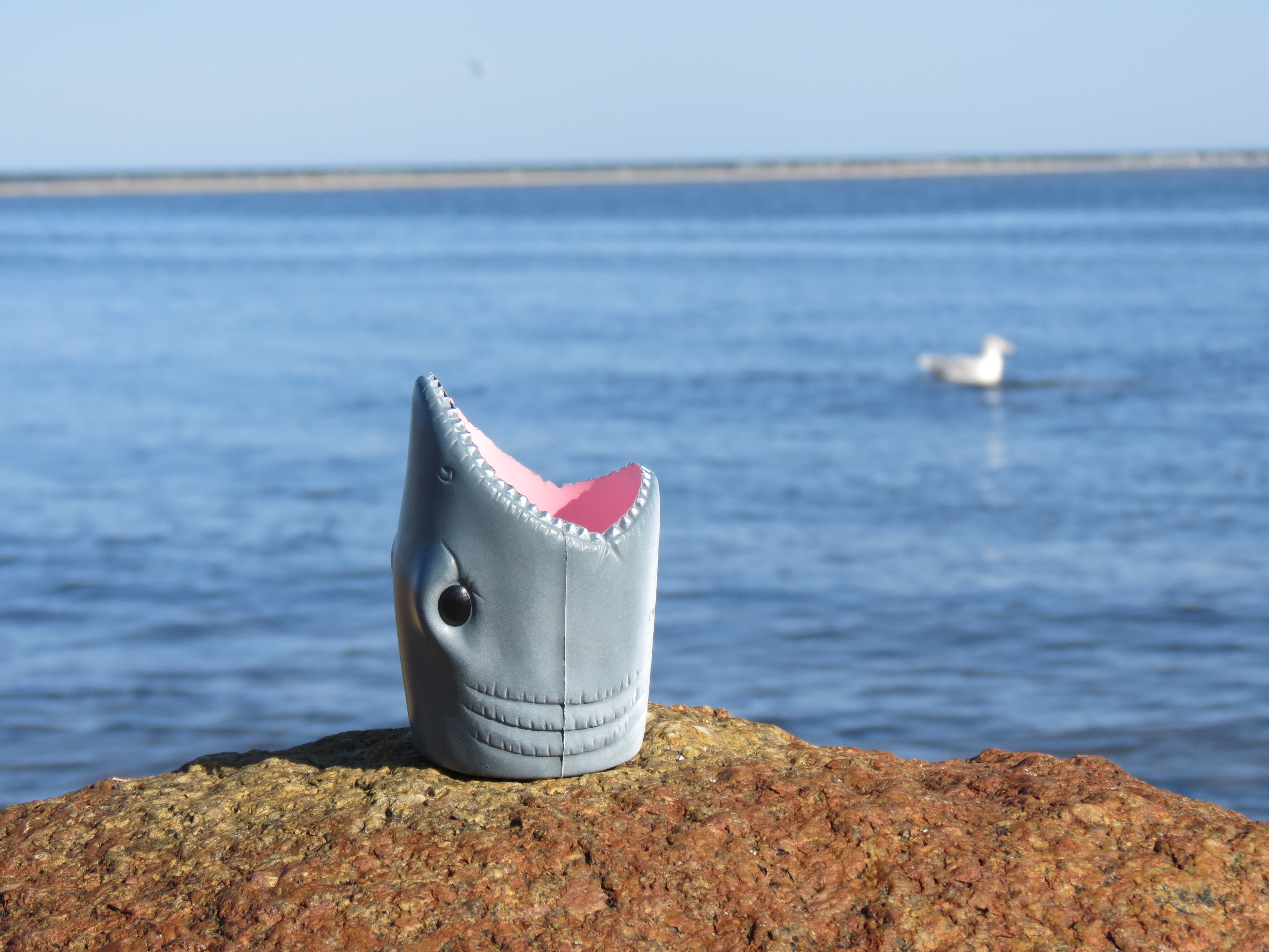 Great White Shark Coozie!